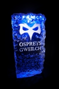 Ospreys Badge Ice Sculpture