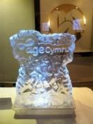 Age Cymru Charity Auction