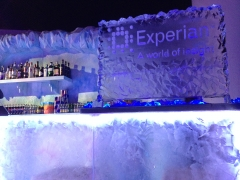 Experian Logo Engraved in Ice Plaque