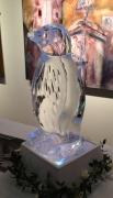Penguin (50cm tall)