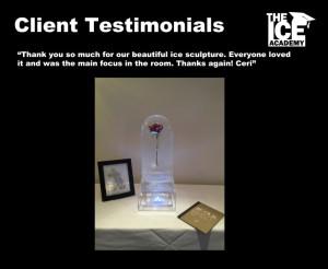 Client testimonials beauty