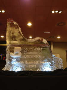 """""""Thank you so so much for the sculpture!! It looked AMAZING and we received a lot of comments on it, so thank you!! ...We will definitely be in touch in the future!"""" Rebecca Lawson (Chamber of Commerce Business Awards)"""