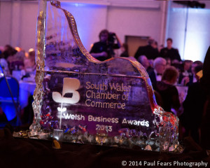 South Wales Chamber of Commerce Business Awards